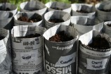 DIY: Newspaper Seed Pots