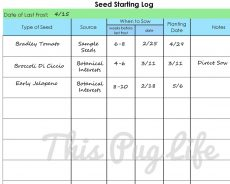 seed starting log example2