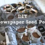 Seed Starting with Newspaper Seed Pots