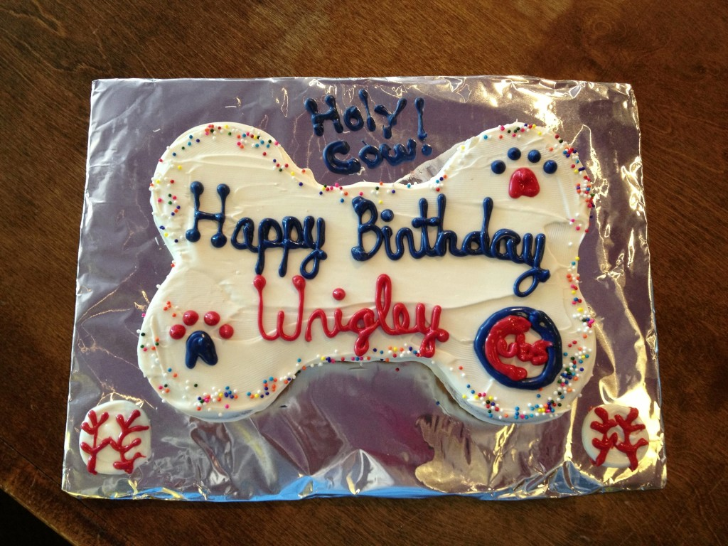 Chicago Cubs dog birthday pupcake