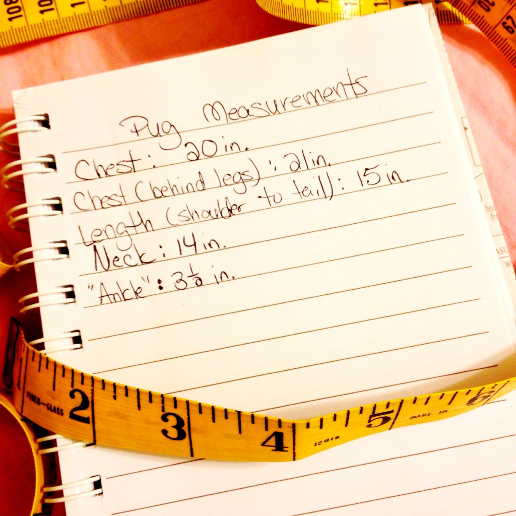 Pug costume measurements