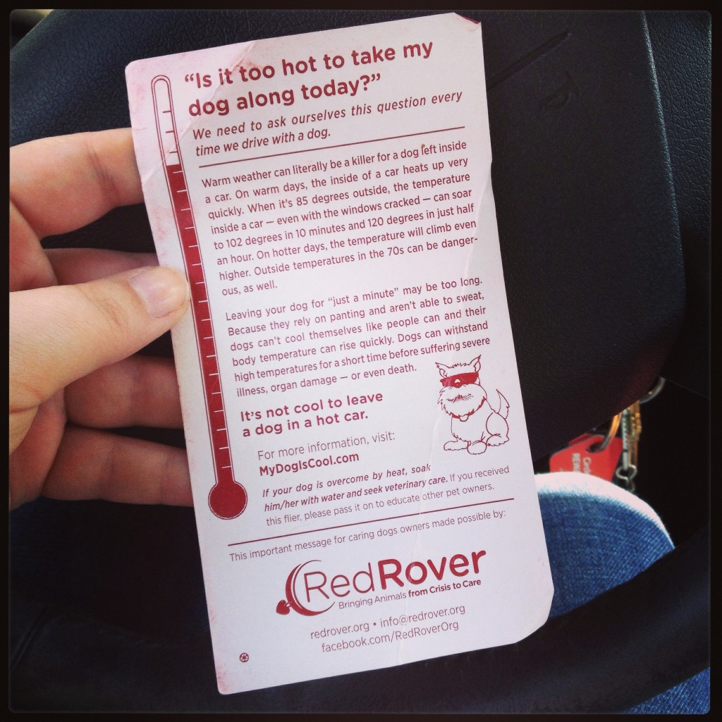 red rover flier