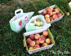 apple peach haul
