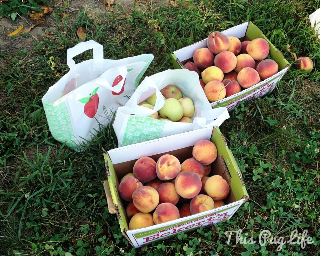 apple peach haul