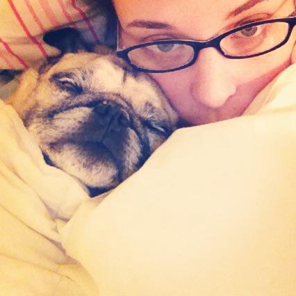 Cuddle Pug