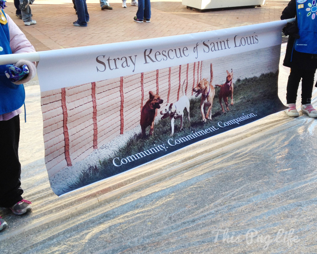 Stray Rescue Parade Banner