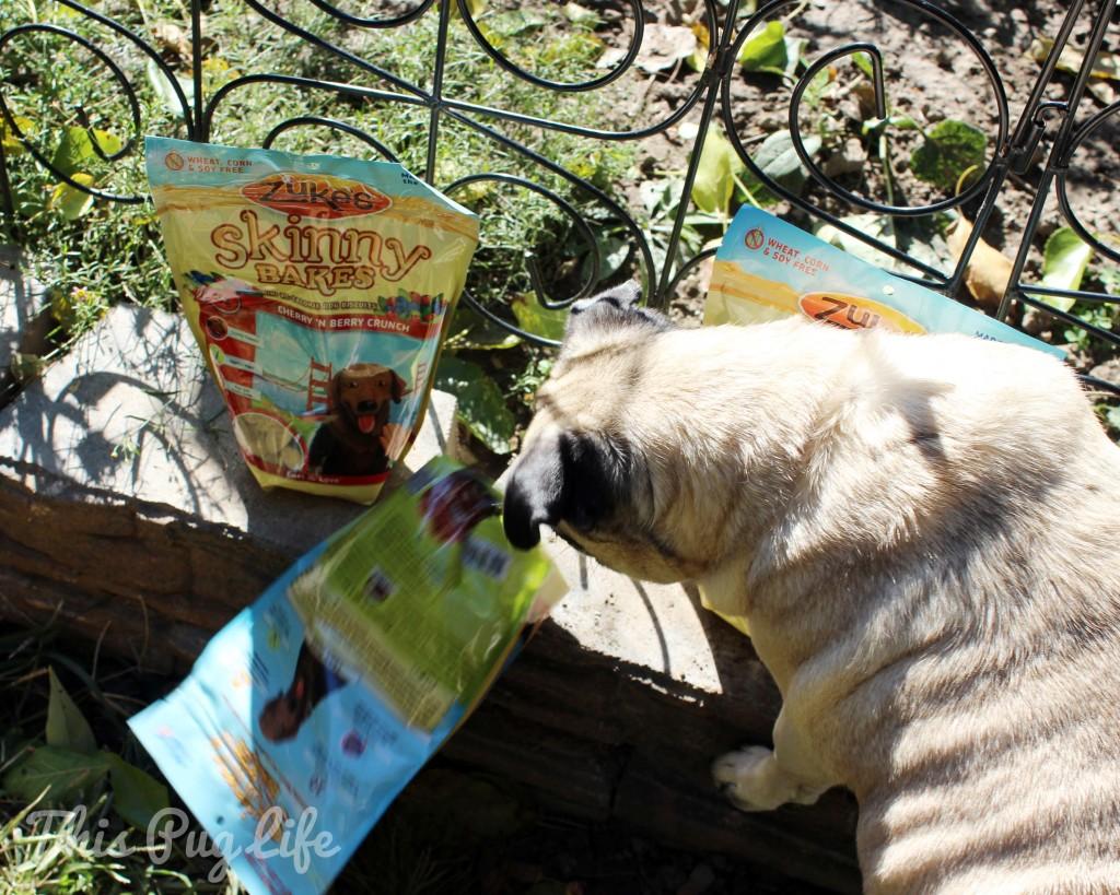 Pug and Zuke's Skinny Bakes