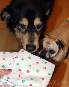 Dogs Christmas Gift