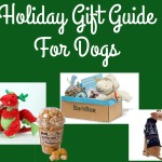 Holiday Gift Guide for Dogs 2013