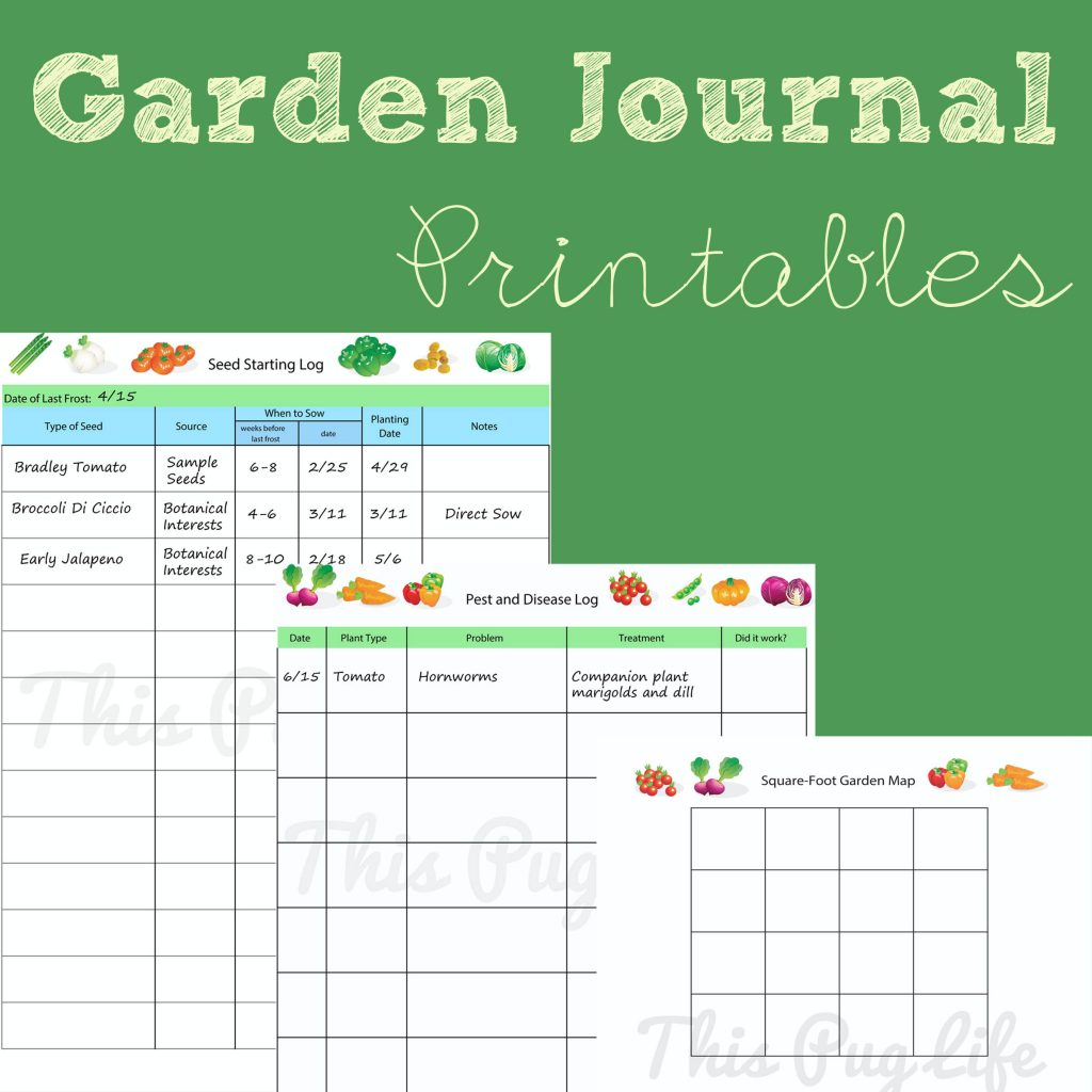 Garden Journal Free Printable Seed Starting and Pest and Disease log and Square foot garden map
