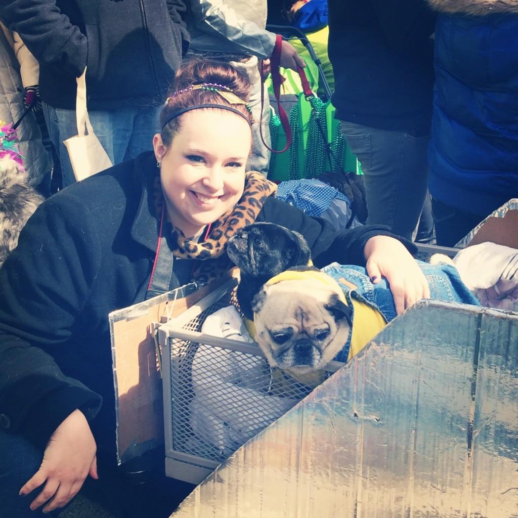 Minion Pug at the Beggin' Pet Parade