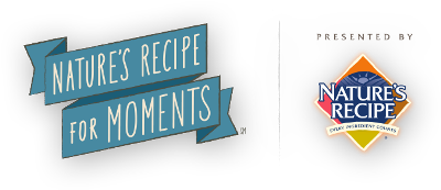 Recipe_For_Moments_Logo_400x173