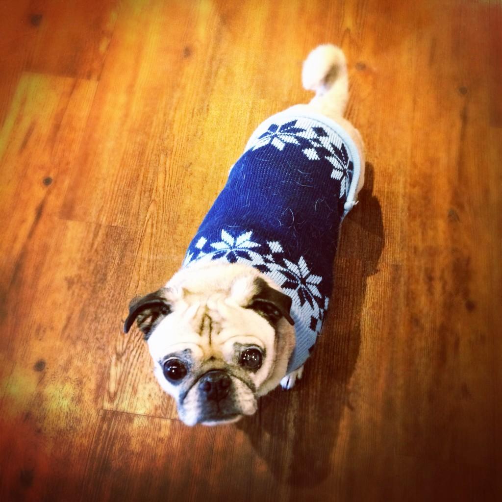 Pug Snowflake Sweater
