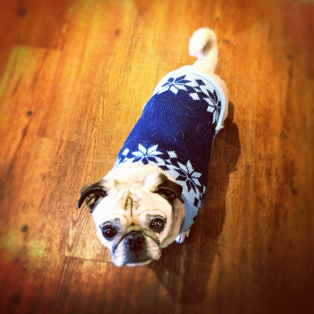 Pug Snowflake Sweater