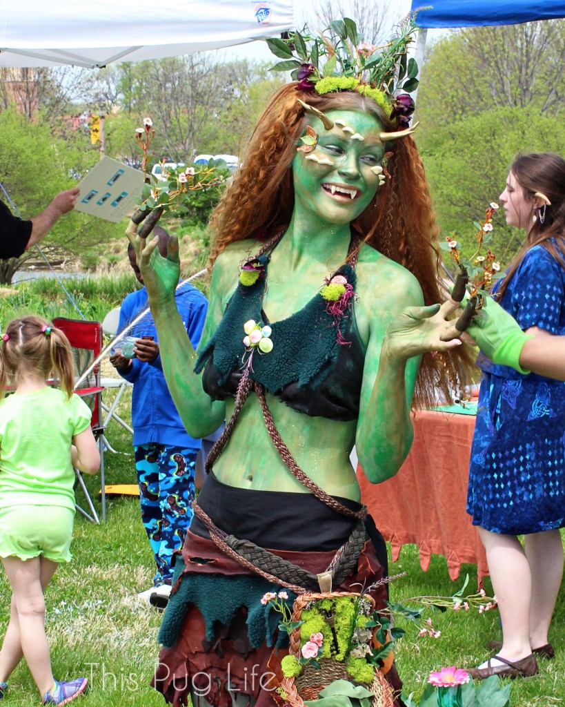 St. Louis Earth Day Festival
