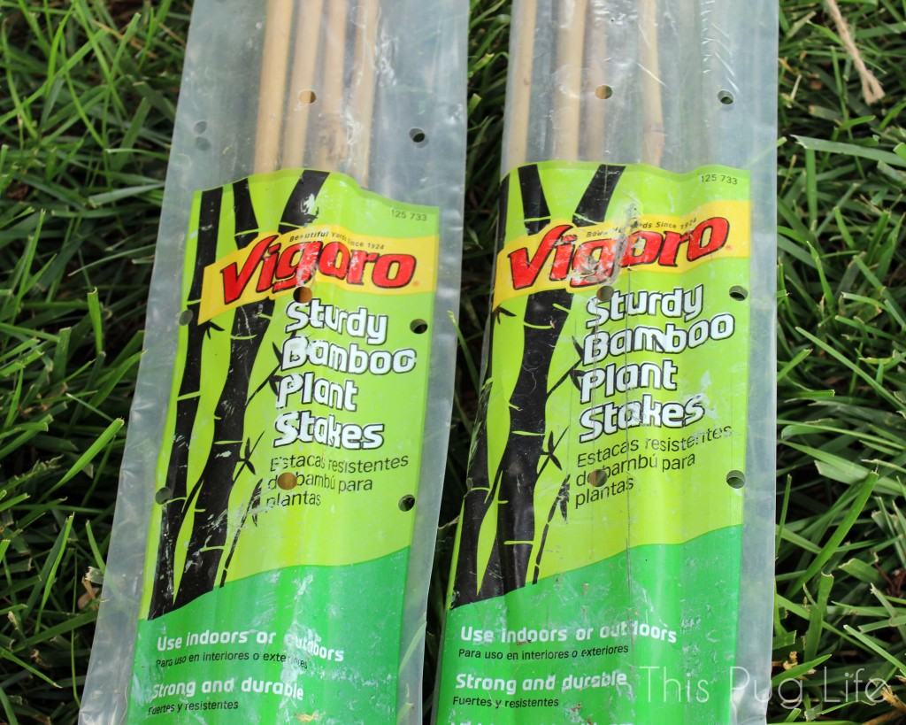 Bamboo Trellis Supplies