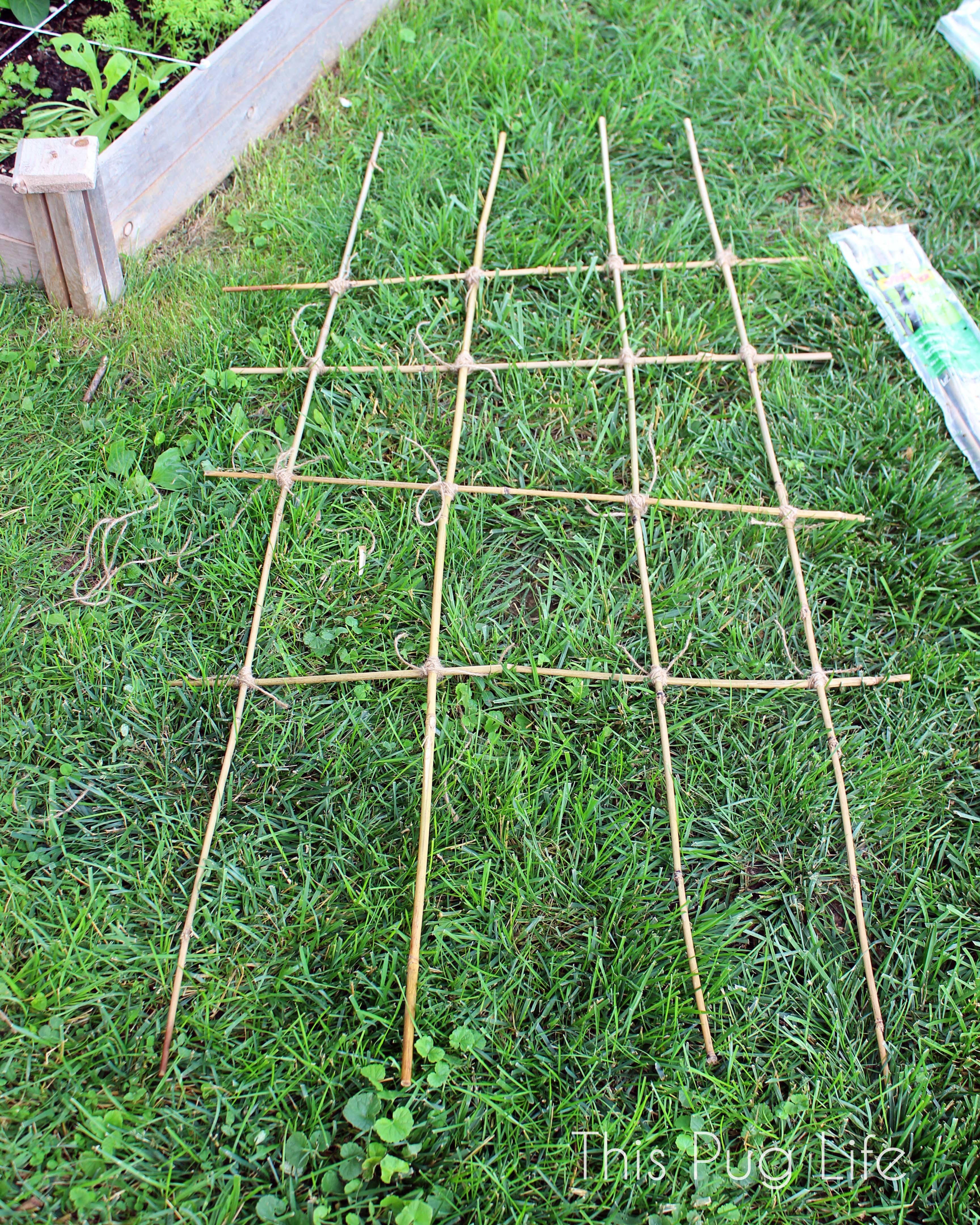 Diy bamboo garden trellis this pug life for Bamboo garden