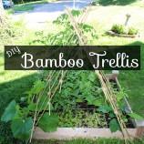DIY Bamboo Garden Trellis