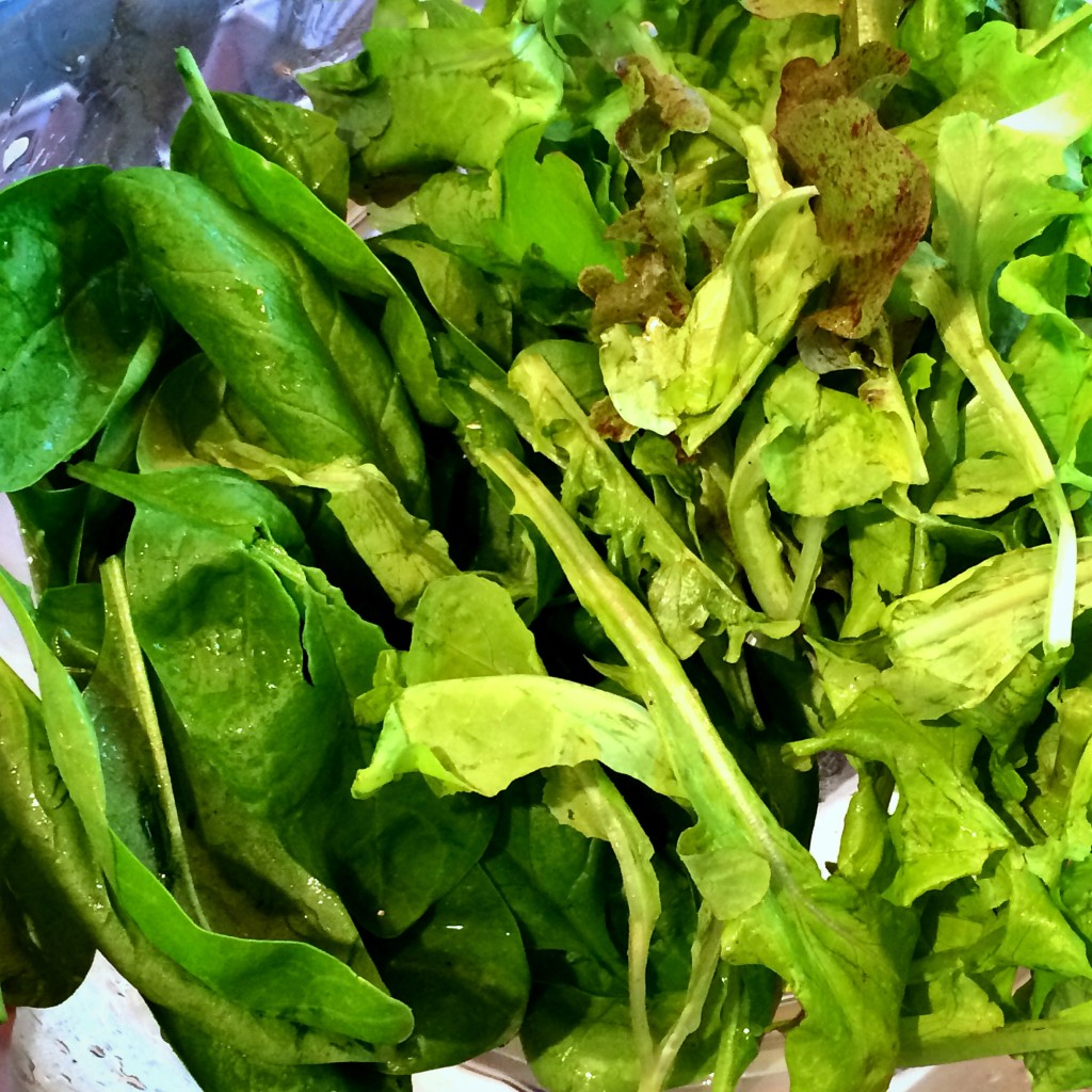 Spinach and Lettuce Harvest