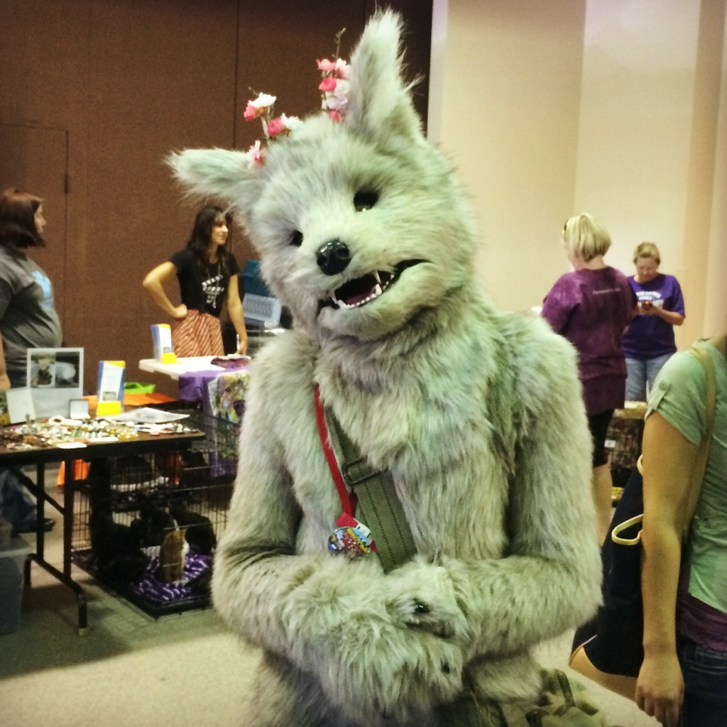 Anime Convention Furry