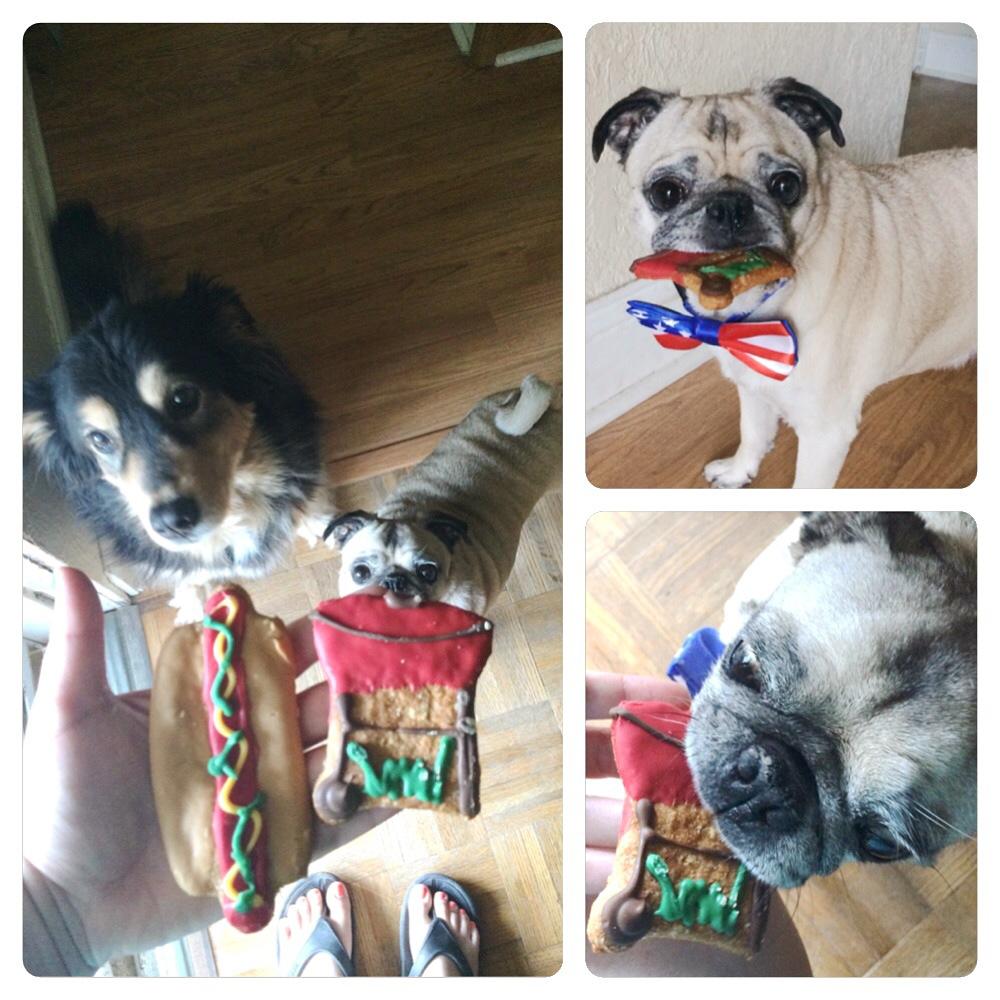 Pug 4th of July Treats