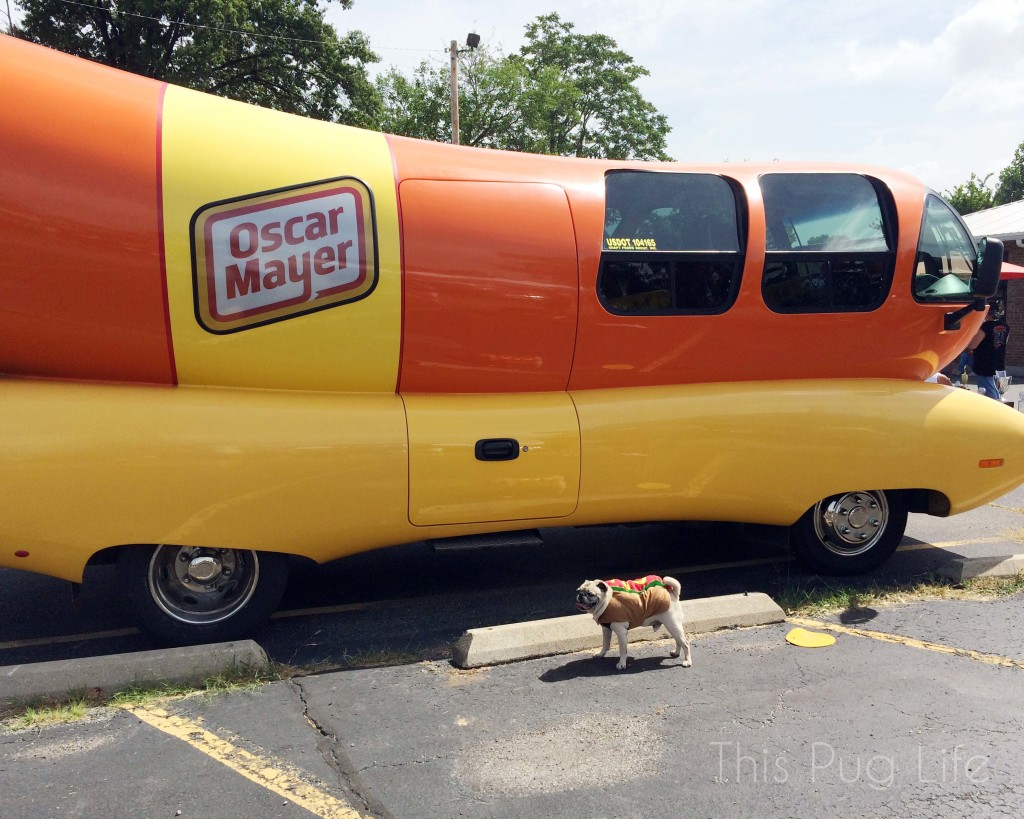Pug and the Oscar Mayer Wiener Mobile
