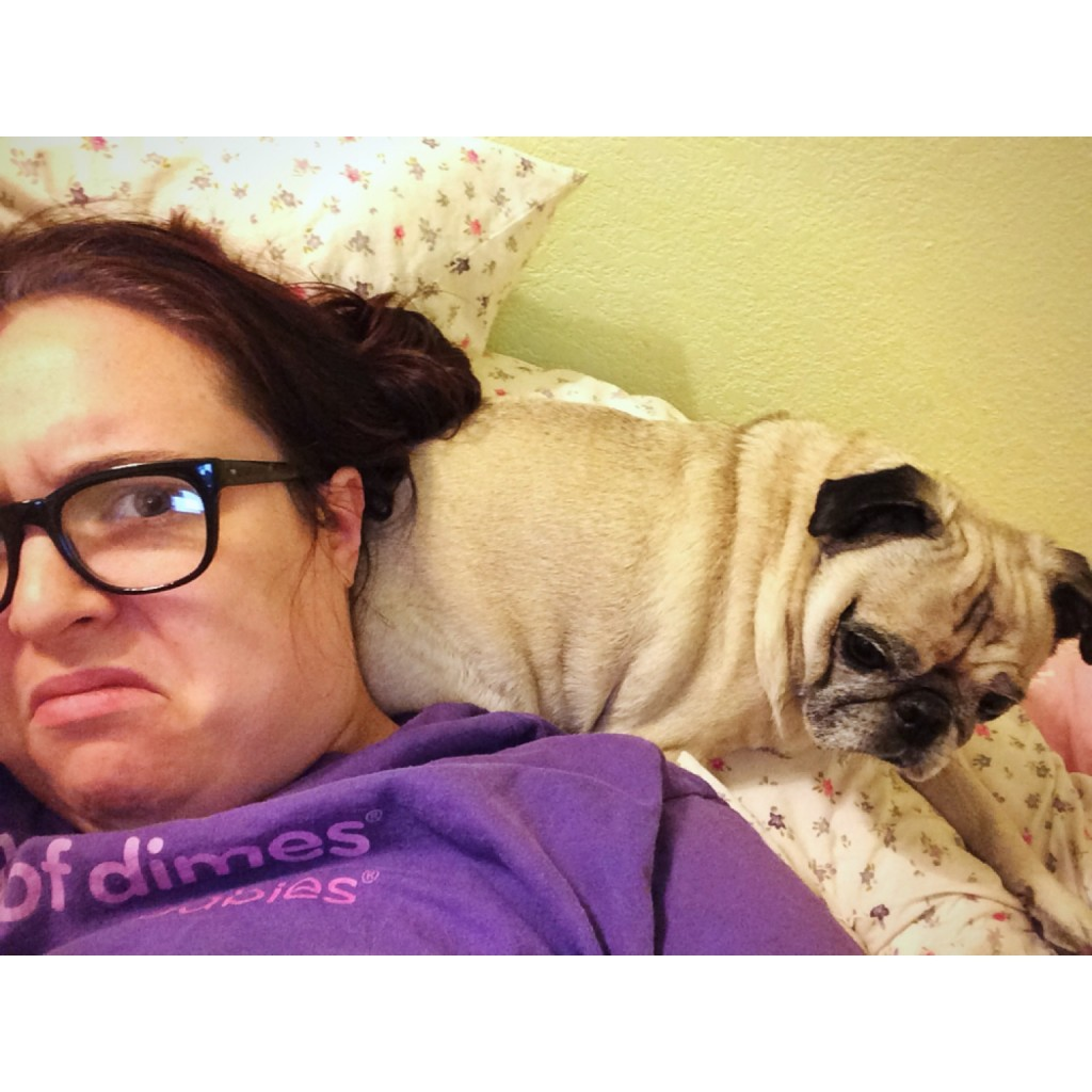 Pug Butt Pillow