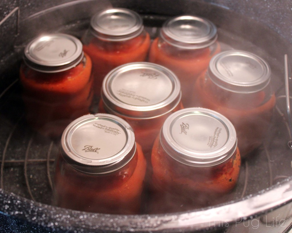 how to make tomato sauce from fresh tomatoes for canning