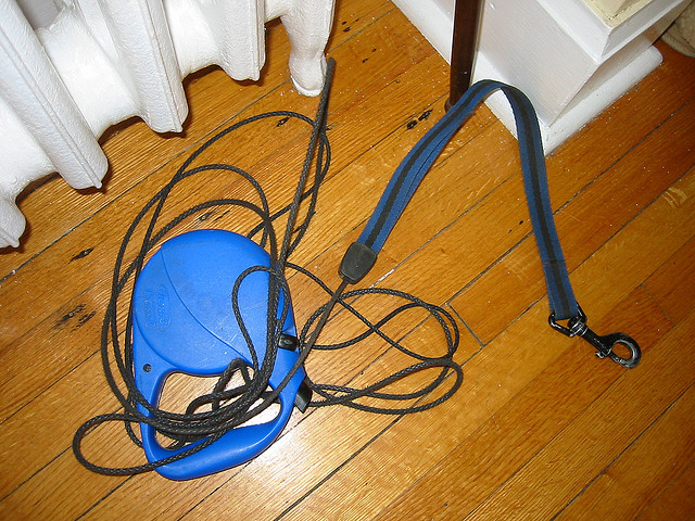 Broken Retractable Leash