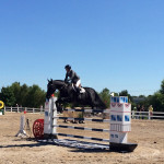 St. Louis National Charity Horse Show 2014