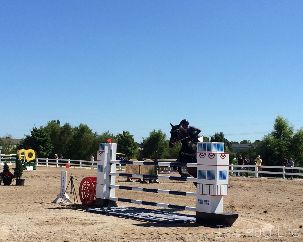 St. Louis National Charity Horse Show Jumping