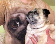 Pug and the Pug Shirt