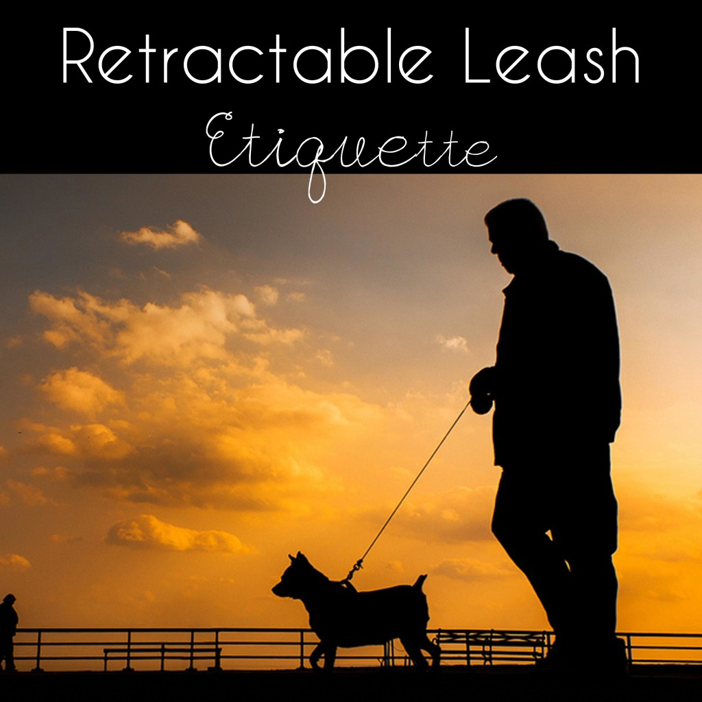 Retractable Leash Etiquette