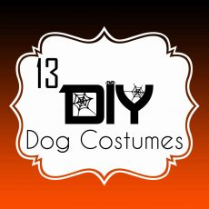 13 DIY Dog Halloween Costumes