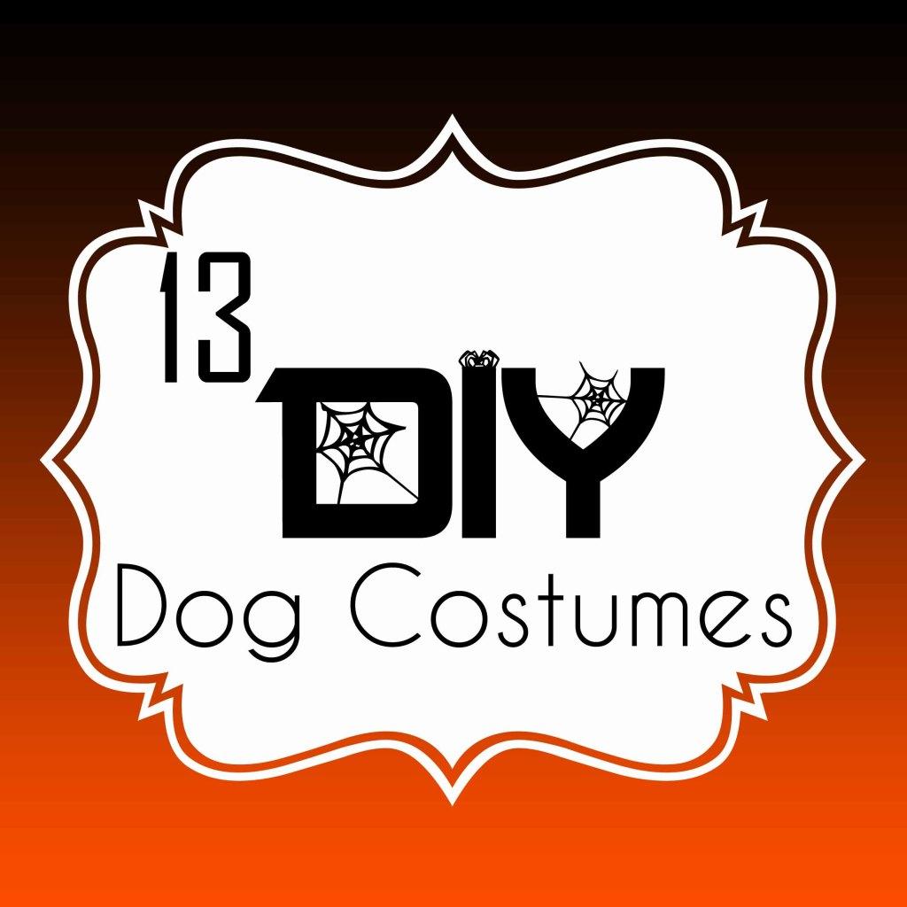 13 DIY Dog Halloween Costumes