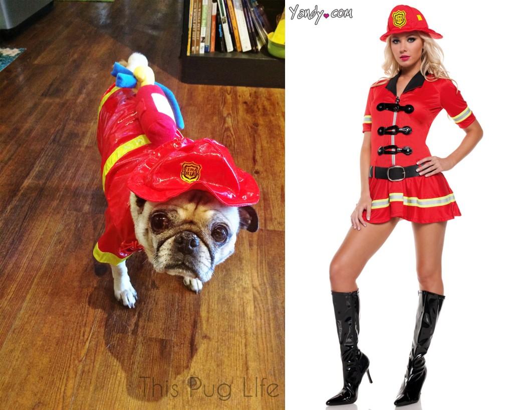 Pug Fireman vs Sexy Fireman