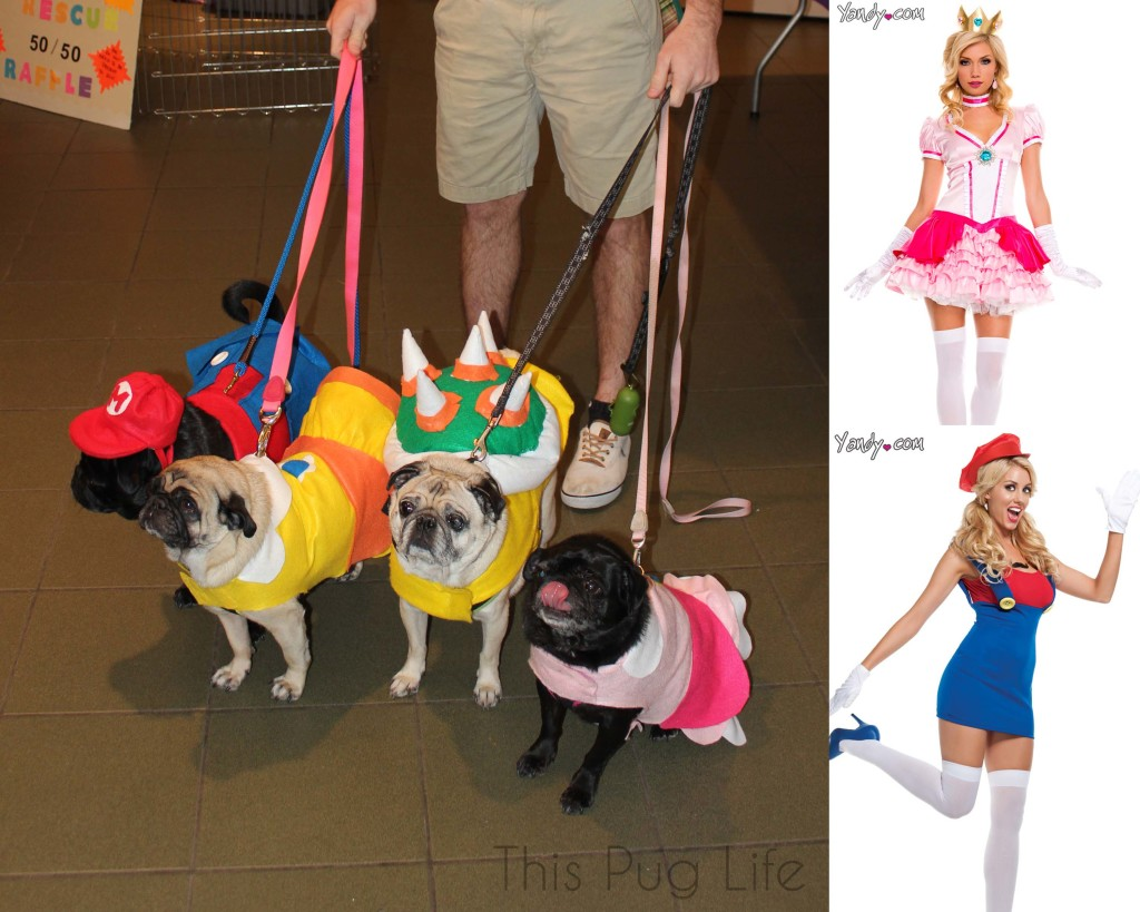 Pug Super Mario Bros.  vs Sexy Super Mario Bros.