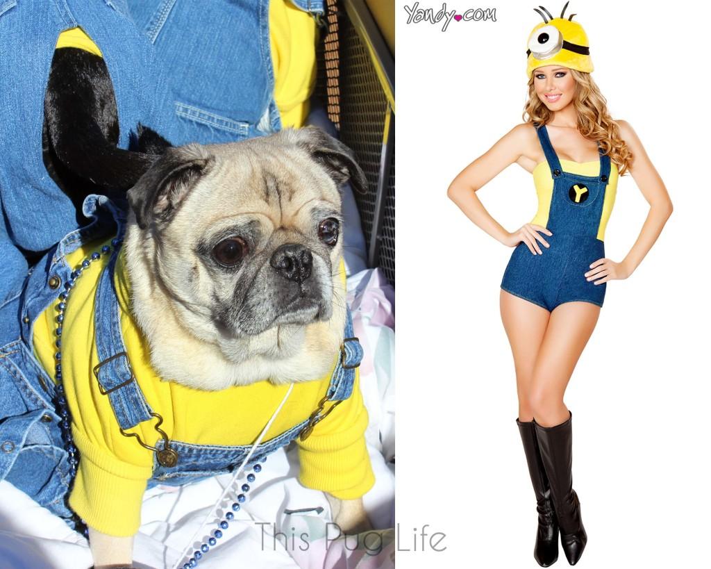 Pug Minion vs Sexy Minion