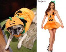 Pug Pumpkin vs Sexy Pumpkin