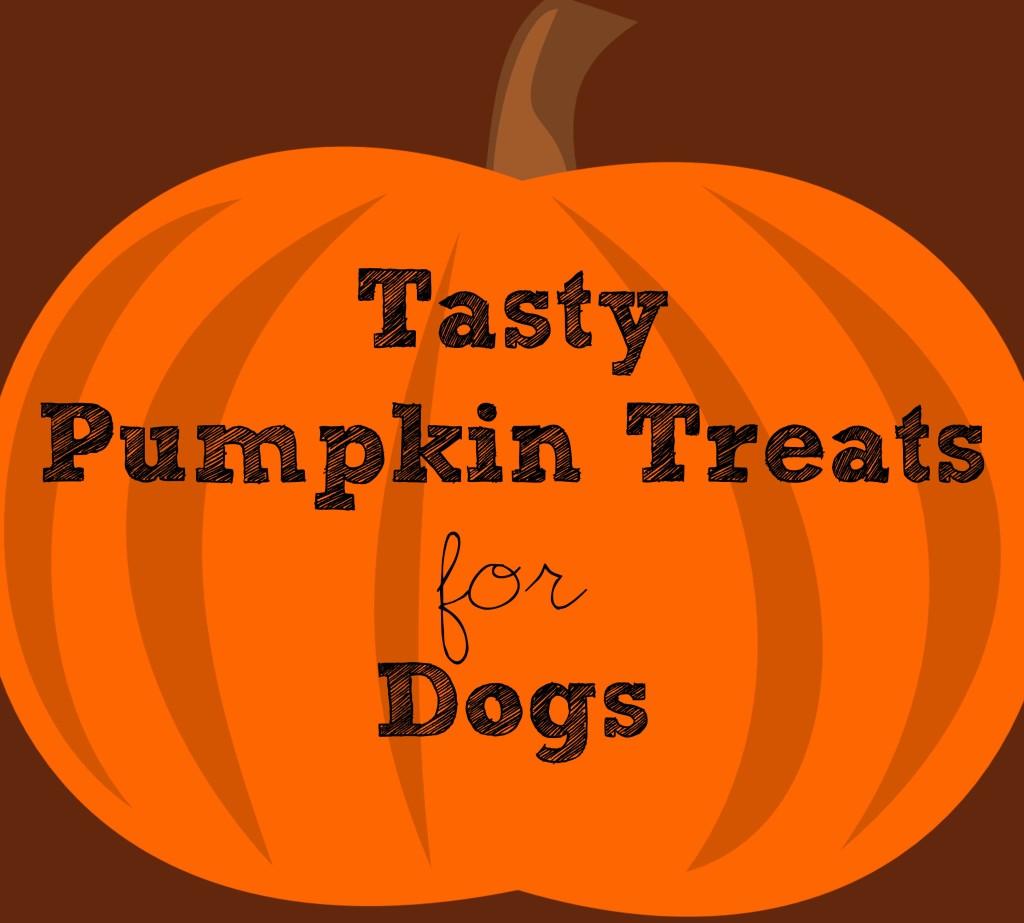 Tasty Pumpkin Treats for Dogs