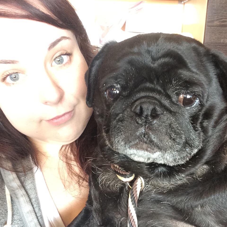 Louis the Pug