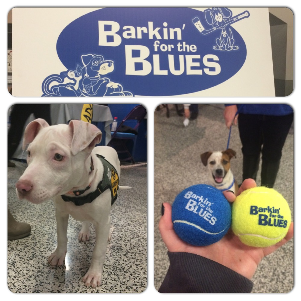 Barkin for the Blues 2014