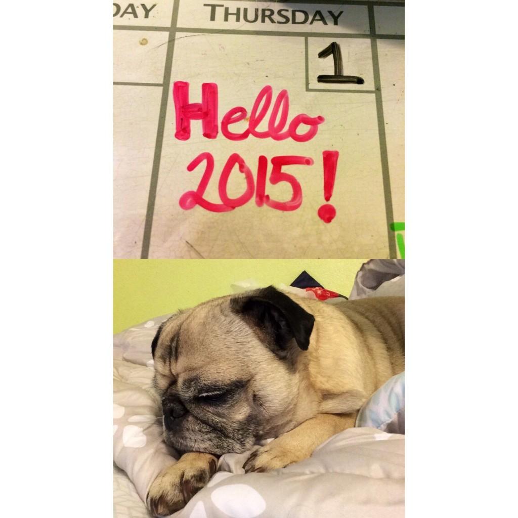 Pug New Year