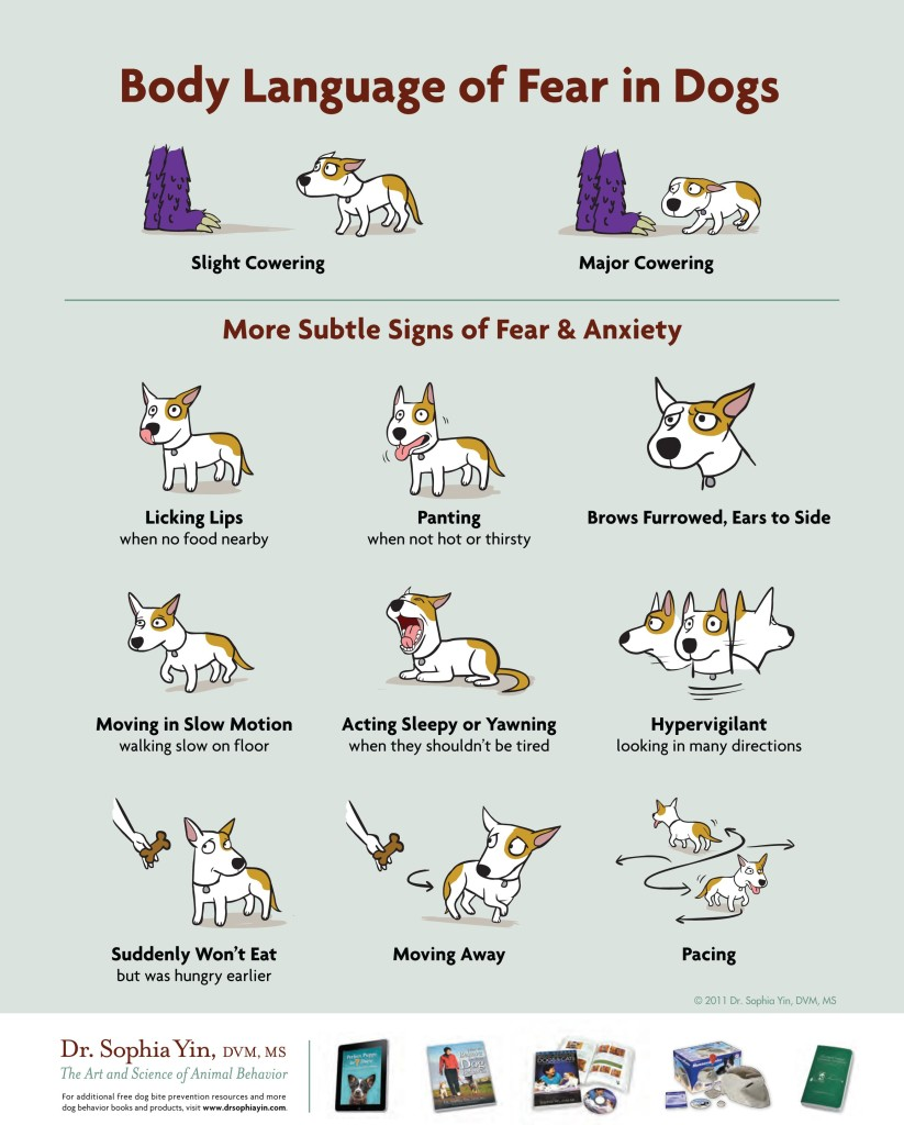 Sophia Yin Dog Body Language Poster