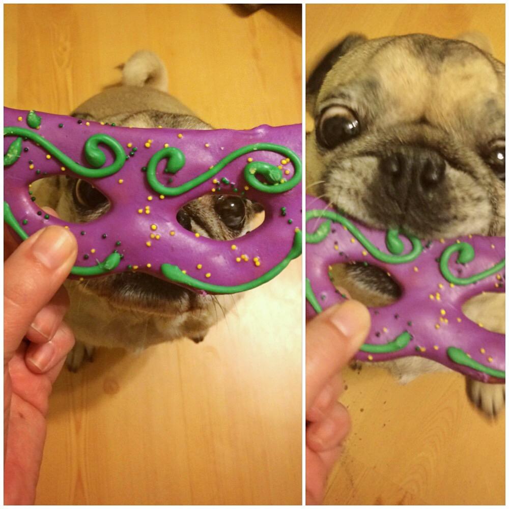 Mardi Gras Pug