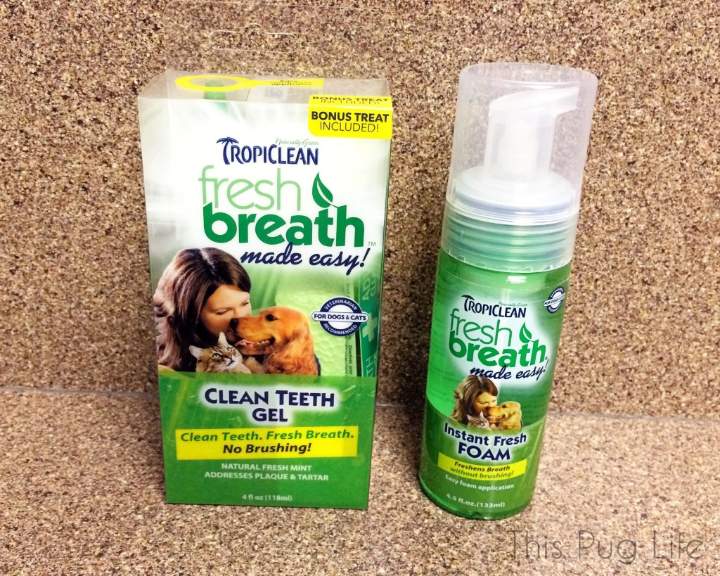 Tropiclean Fresh Breath Foam and Gel