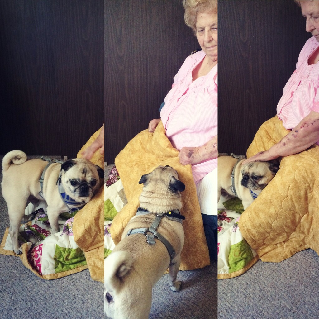 Pug Therapy