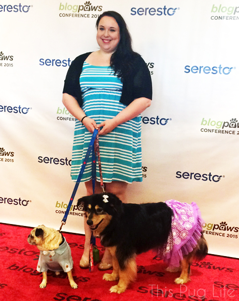 BlogPaws Nashville Red Carpet