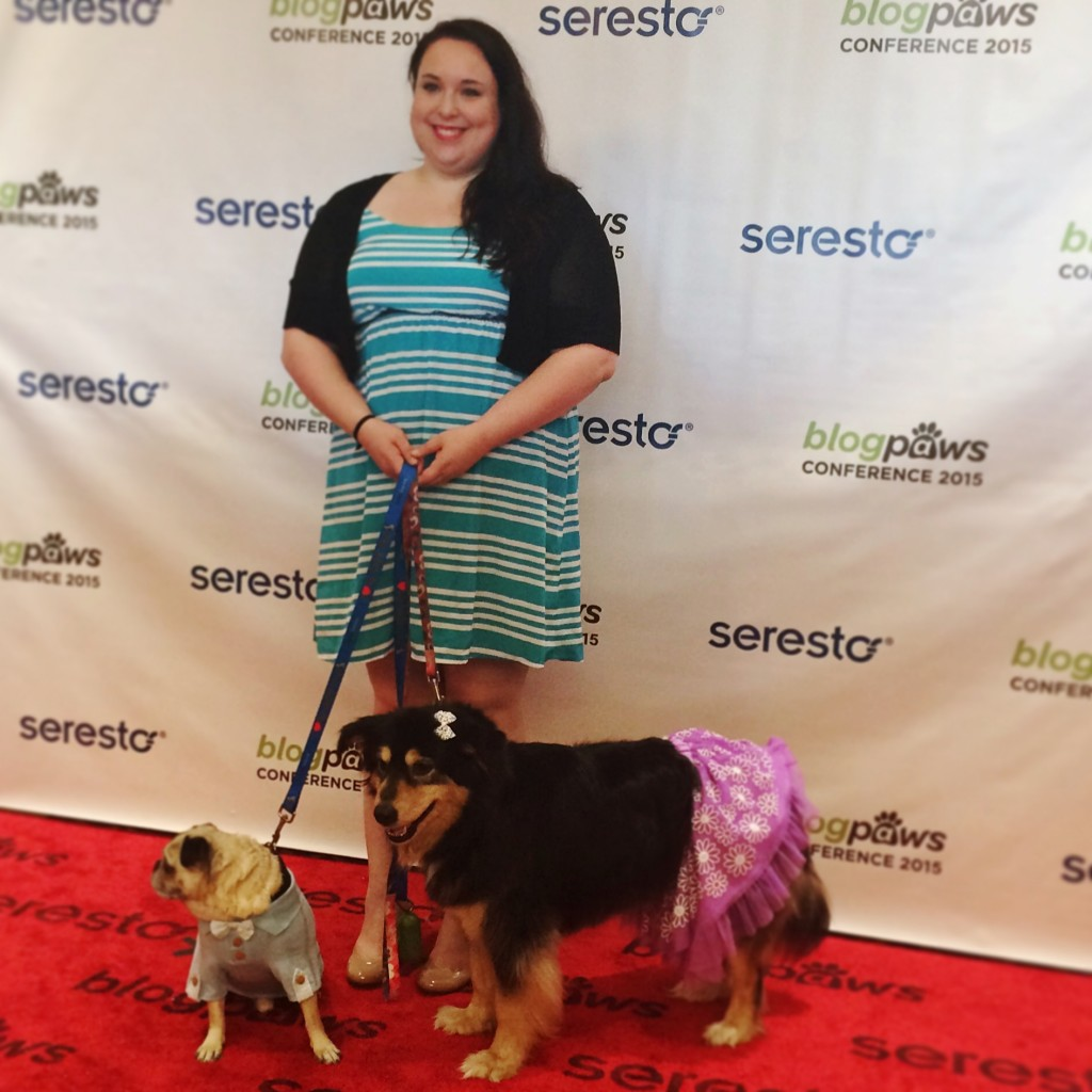 Pug and Molly Red Carpet