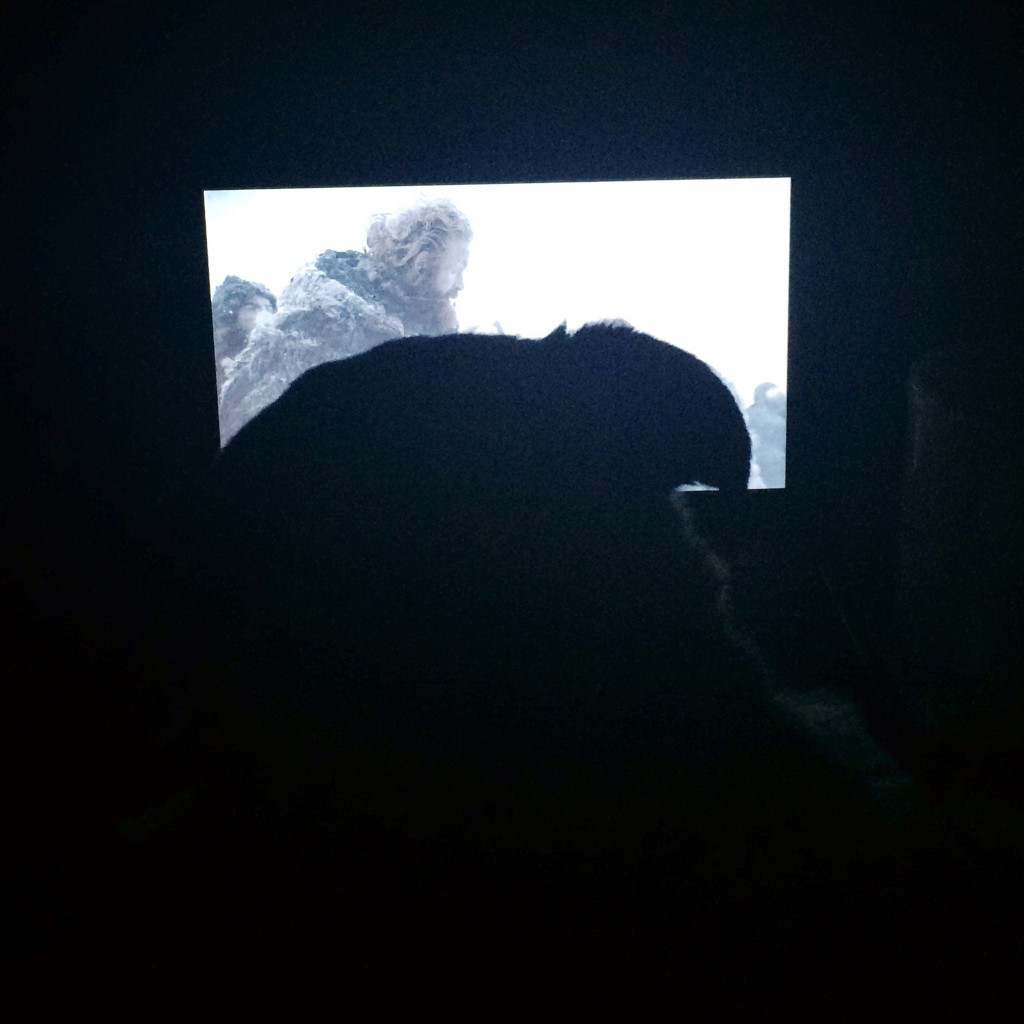 Pug watching Game of Thrones